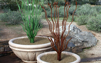 Steel Ocotillo Sculptures